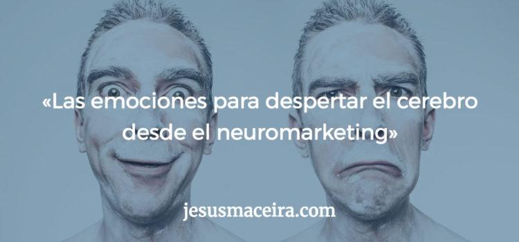 Neuromarketing: Cómo mejorar la estrategia de marketing de contenidos